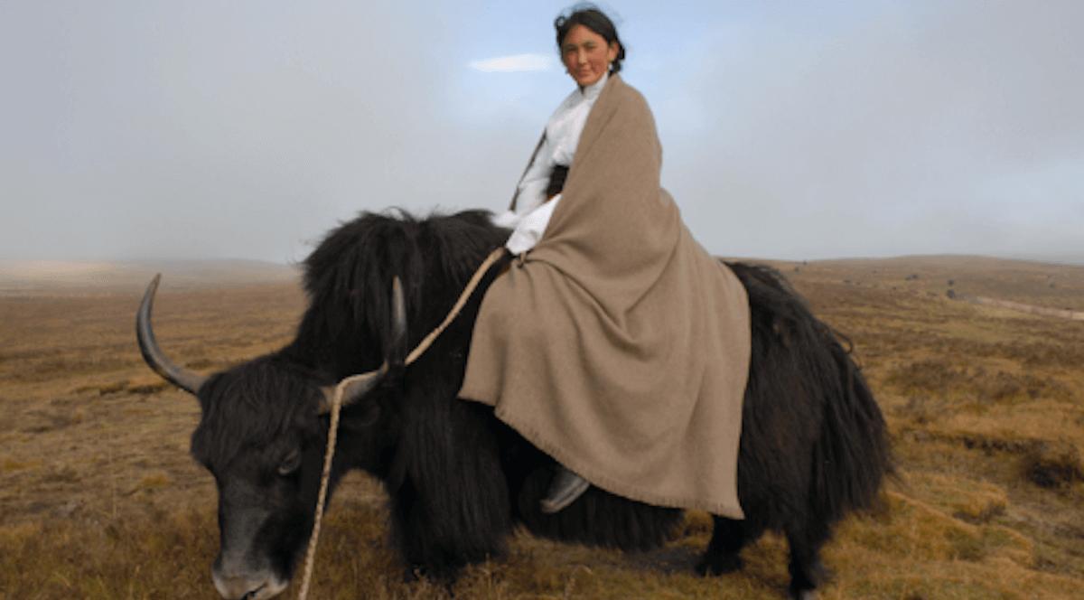 Ethnographic study: Norlha Textiles