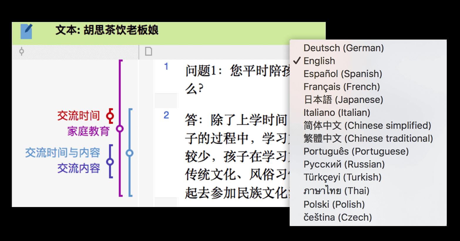 Languages in MAXQDA
