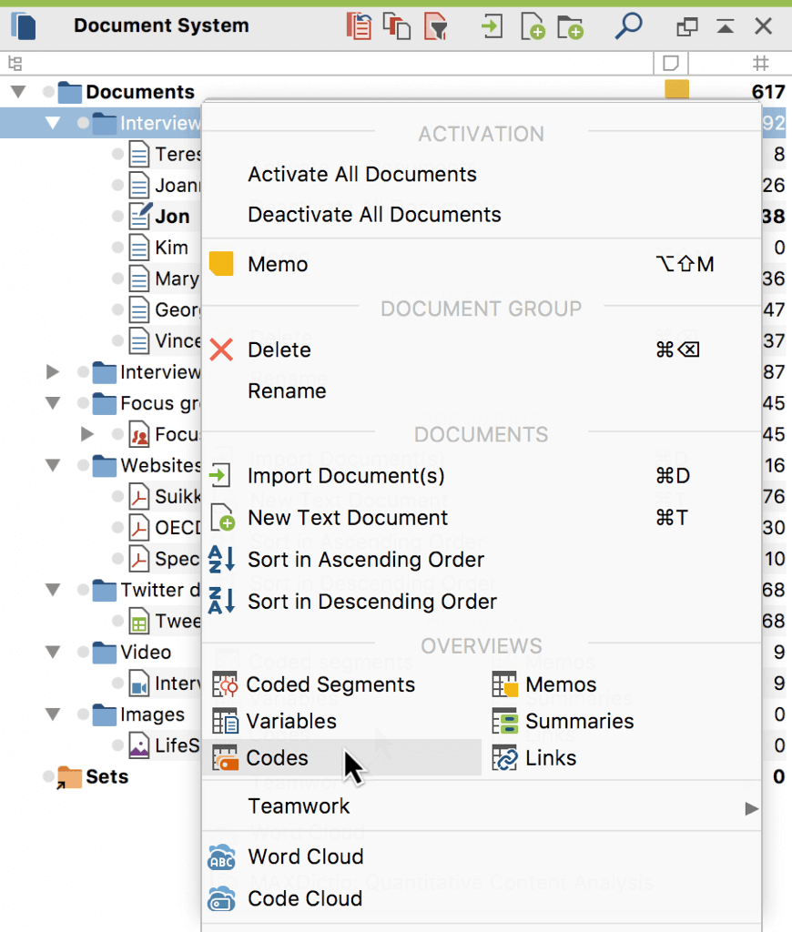 Open the Overview of Codes in the context menu of a Document Group