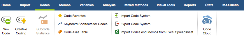 Document analysis: Figure 2: coding options in MAXQDA