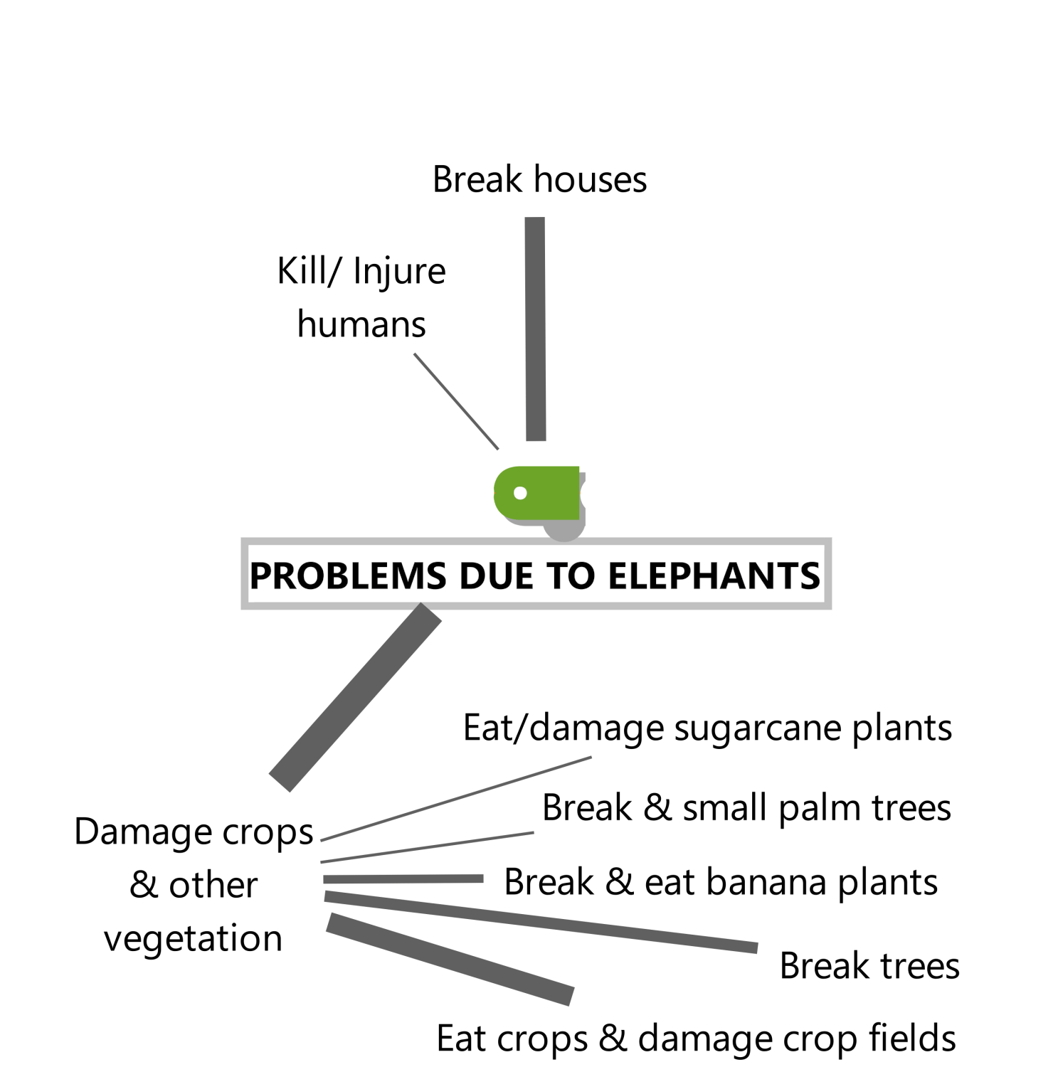 Screenshot from MAXQDA2020 showing a diagram made with MAXMaps. The diagram depicts problems due to elephants.