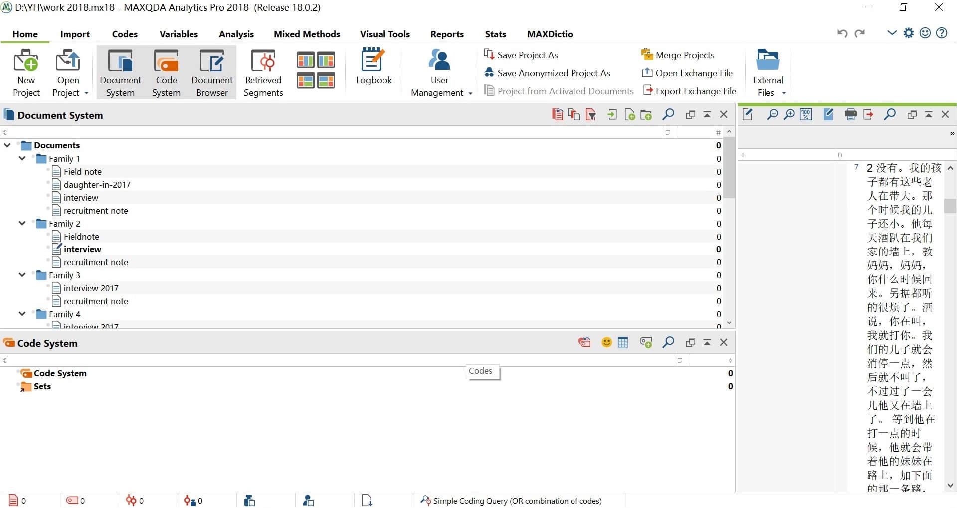 Organizing the data with MAXQDA