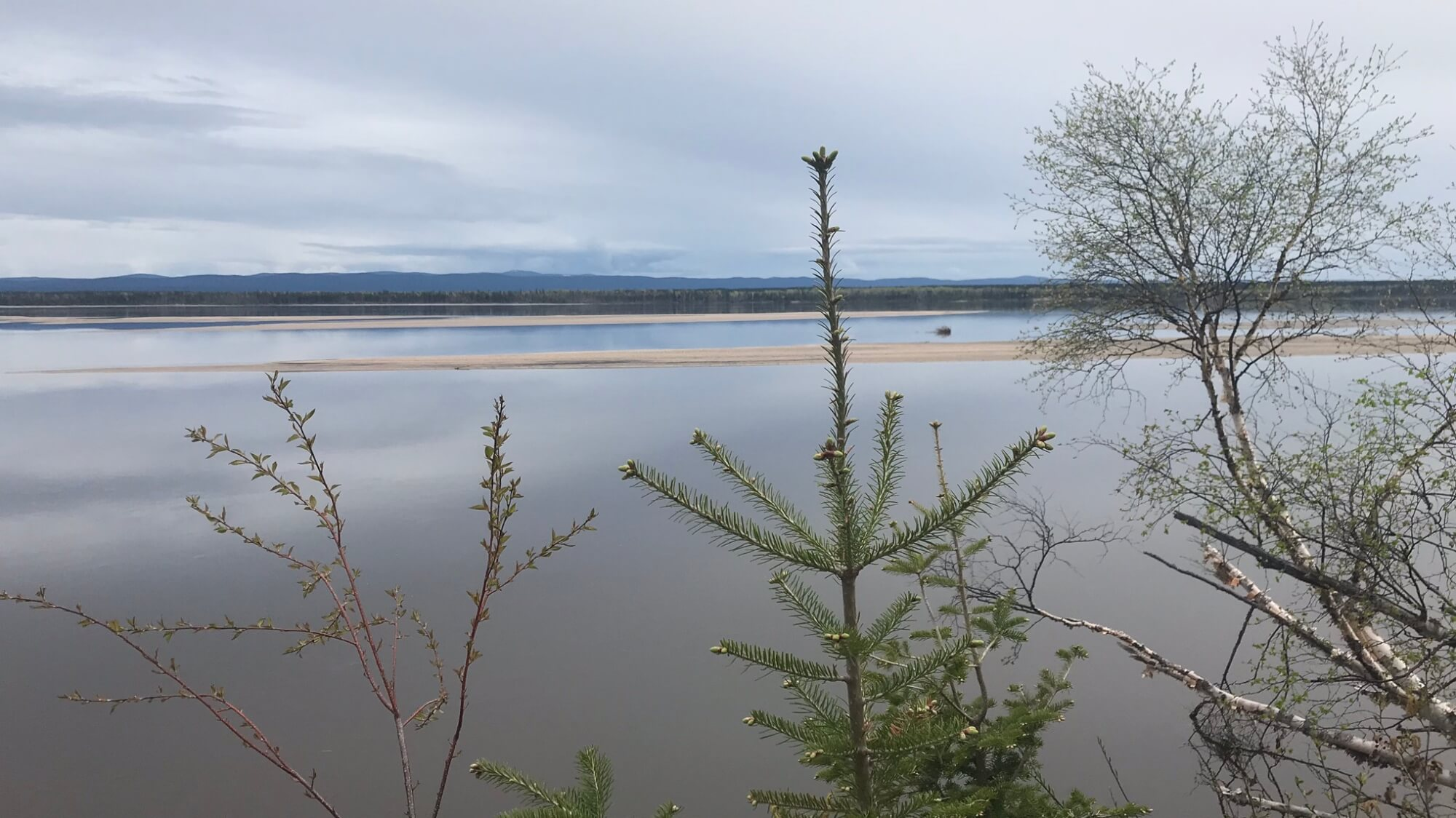 View from Happy Valley-Goose Bay's Birch Island Boardwalk