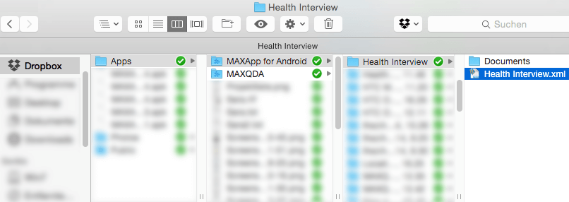 Export MAXApp project to MAXQDA