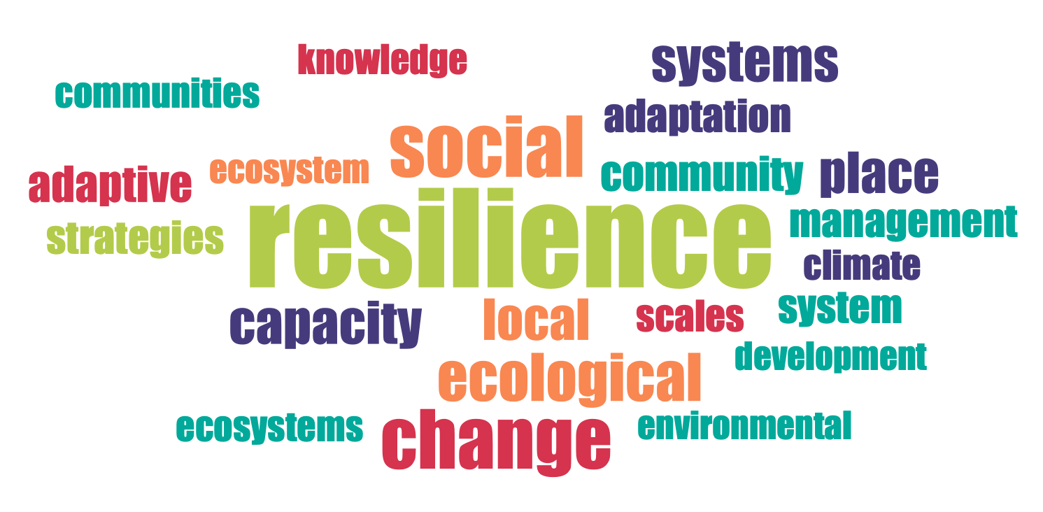Word frequency in abstract: ecology
