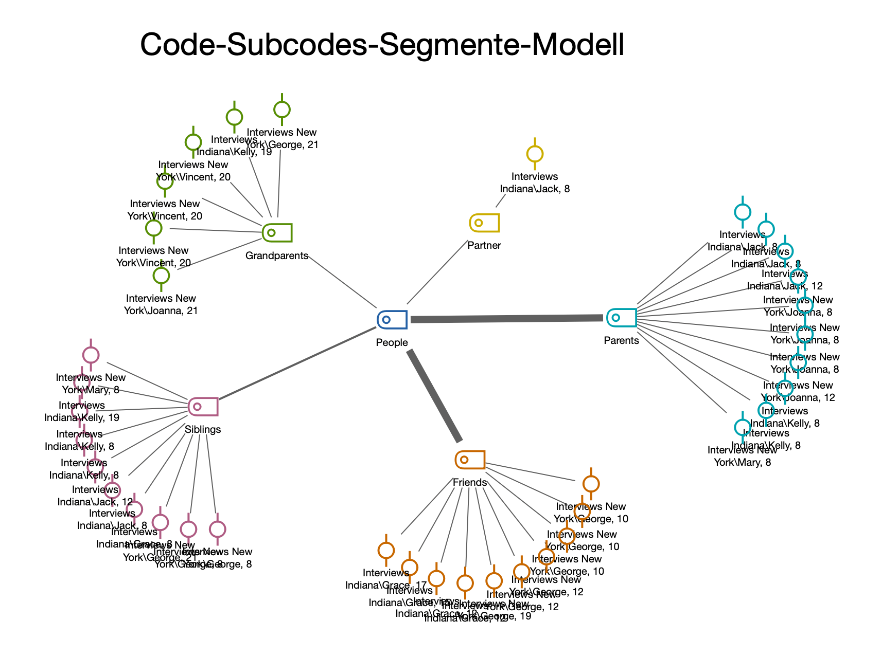 The Code-Subcodes-Segments model